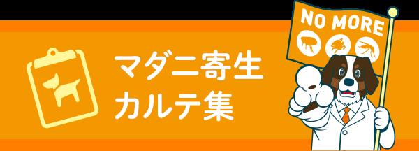 マダニ寄生カルテ集